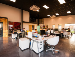Corporate Office Waste: The Impact of not Repurposing