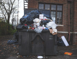 The Costs of Illegal Dumping
